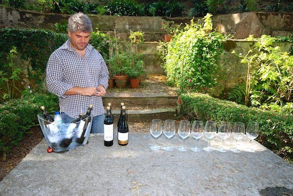 Wine Tour Gradil Garden