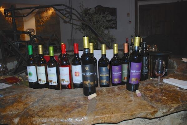Wine Tour Lobos Range